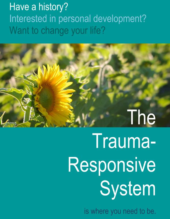 The Trauma Responsive System